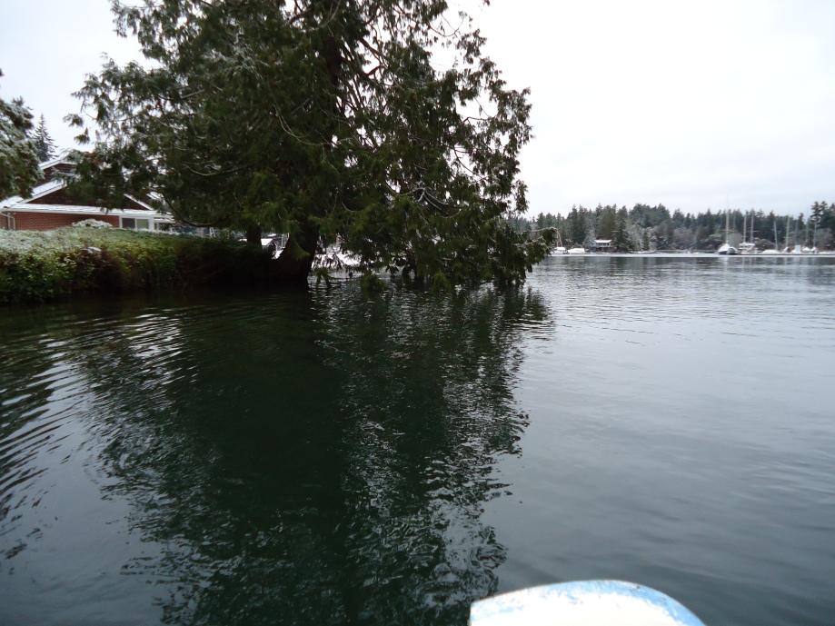 salmon creek high tide