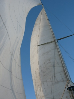 sailing Old Hand 08 002