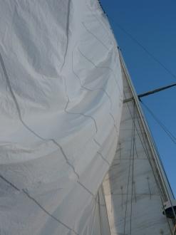sailing Old Hand 08 003