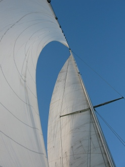 sailing Old Hand 08 006