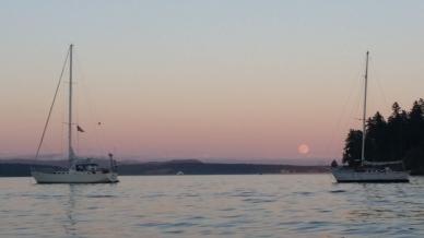 friday harbor moon